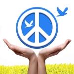 0 peace contest1