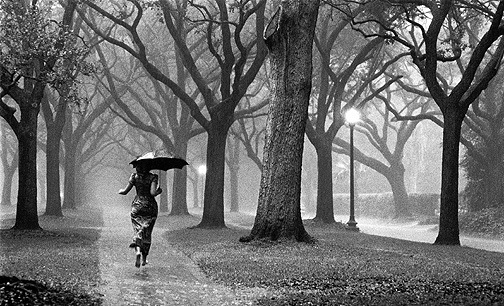 It's raining up ahead