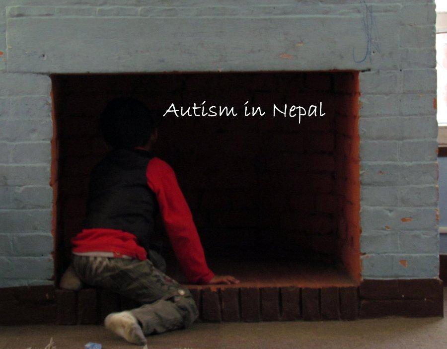 autism care nepal (3)